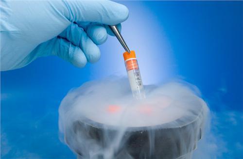 冷冻胚胎的最佳时期